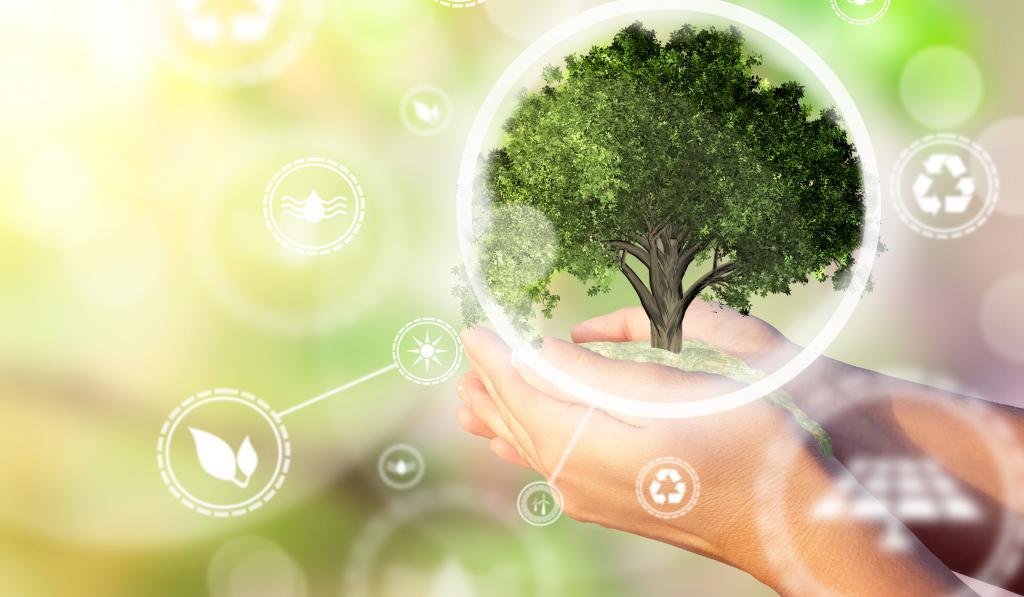 Stanowisko w sprawie projektu  Europejskiego prawa o klimacie - aktualizacja